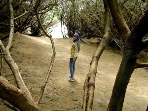 Goa Cemara
